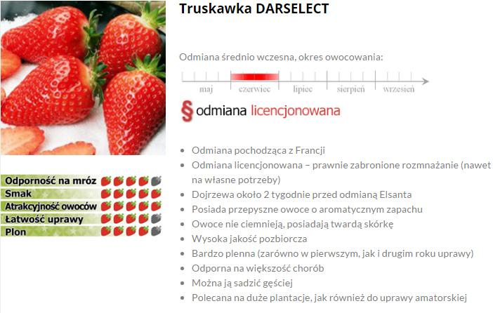 Darselect