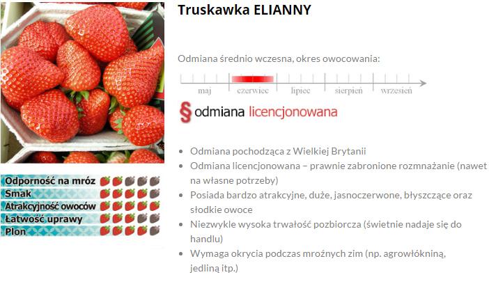 Elianny