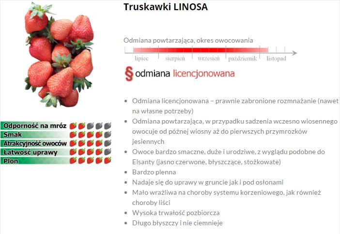 Linosa